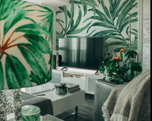 5-plantes-faciles-entretien-petite-jungle-urbaine